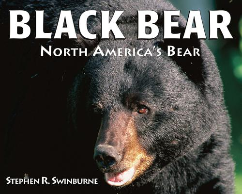 Black Bear By Swinburne, Stephen R.